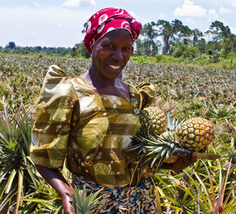 madina holds a fresh pineapple, a key ingredient for Ugandan pineapple nut bread