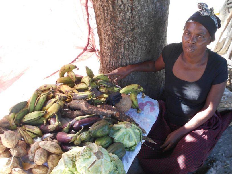 FINCA Haiti client Julia Pierre