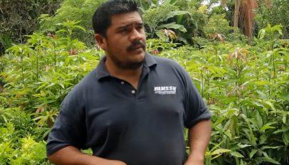 Nelson, FINCA Nicaragua client