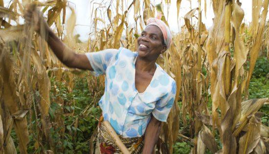 microfinance research