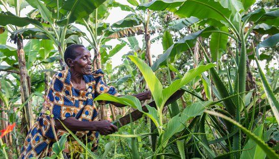 empower rural women